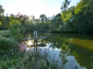 L'accès à l'eau n'est heureusement pas un problème dans cette région verte.